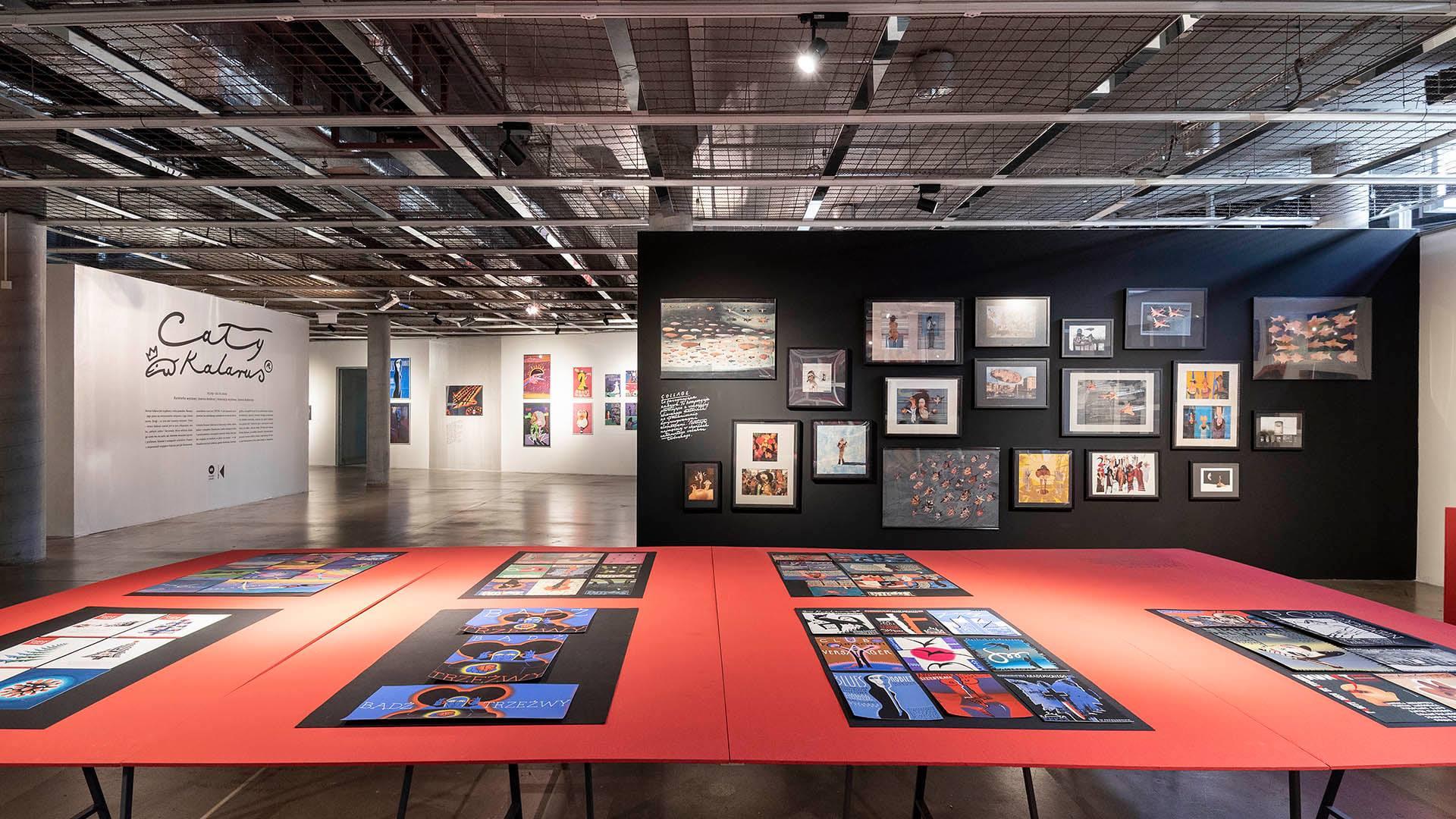"""Exhibition """"Cały Kalarus"""" - Joanna Kubieniec i Katarzyna Długosz - Biuro architektoniczne w Katowicach"""